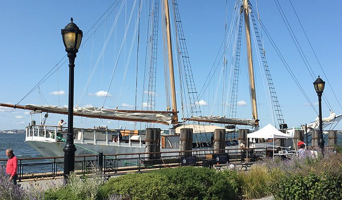 New york craft beer tasting sail xperience days for New york craft breweries