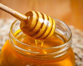Honey Tasting Beekeeping Workshop
