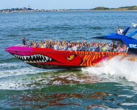 Codzilla Speedboat Ride