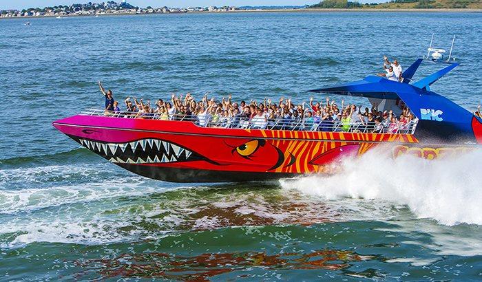 Codzilla High Speed Thrill Ride