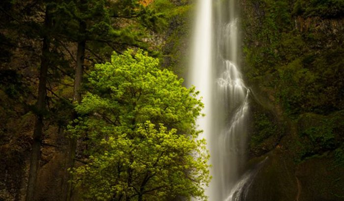Columbia River Gorge Waterfalls and Wine