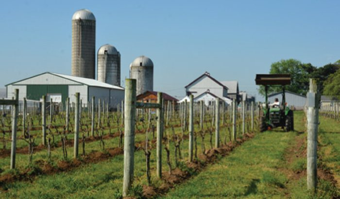 Eastern Shore B-and-B with Wine Tasting