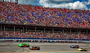 NASCAR Driving