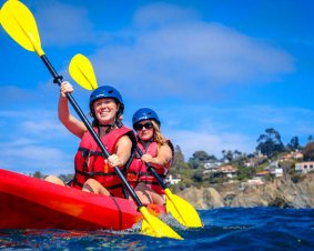 Coronado Kayaking Tour