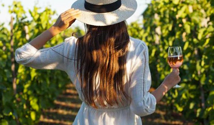 Long Island Music and Wine Tasting Tour