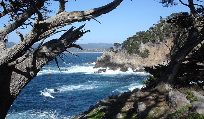 Monterey Movie Tour