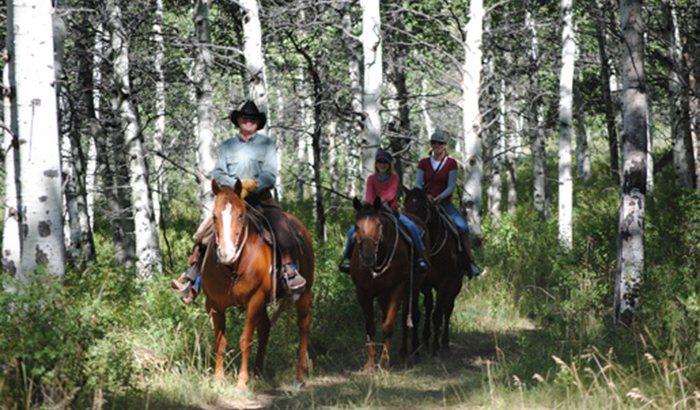 Park City Horseback Trail Ride