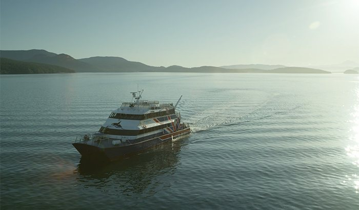 San Juan Islands Whale Watching Cruise