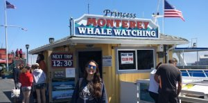 Staff Review- Whale Watching in Monterey